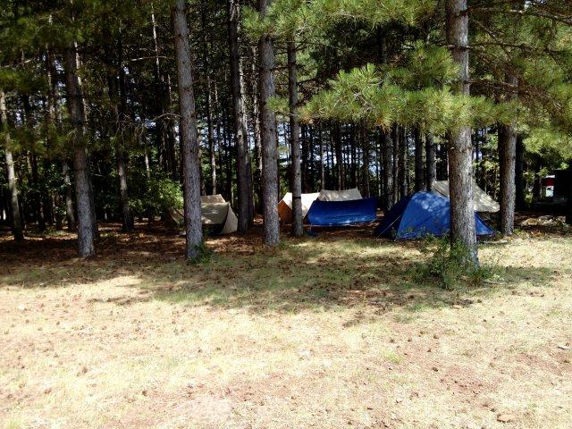 notre campement sous la sapinière
